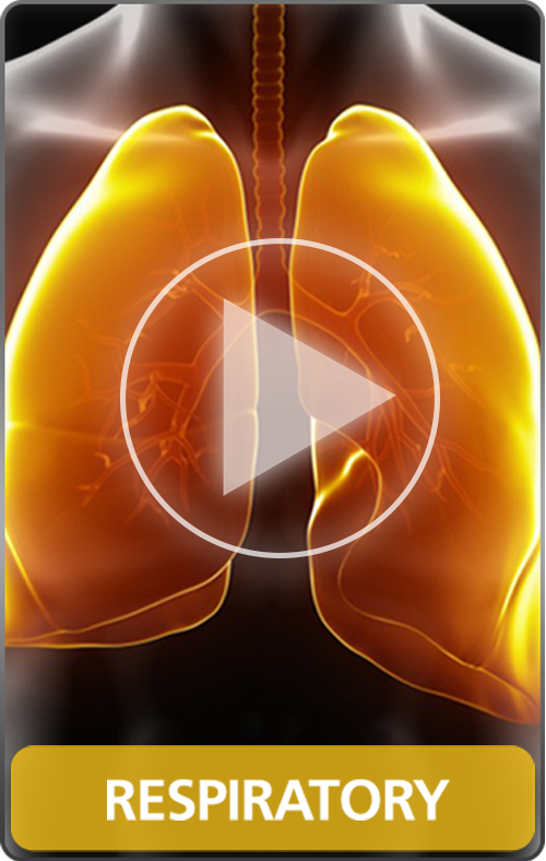 Respiratory - Disease Movie